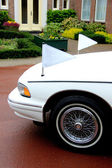 White hearse — Stock Photo