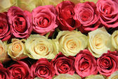 Pink roses in different shades in wedding arrangement — Стоковое фото