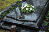 Funeral flowers on a tomb — Stock Photo