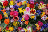 Bright colored spring flower bouquet — Stock Photo