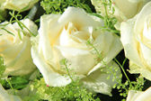 Wedding flowers: roses and green — Stockfoto