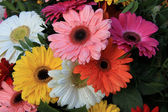 Gerberas in a colorful bridal bouquet — Stock Photo
