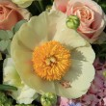 Mixed bridal arrangement — Stock Photo #45033901