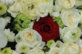 Red rose in white bridal bouquet — Stock Photo