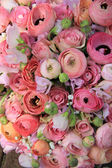 Pink roses and ranunculus bridal bouquet — Photo
