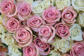 Pink and white roses in a bridal arrangement — Stock Photo