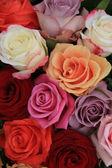Mixed bridal roses — Stock Photo