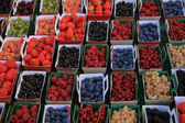 Berries in boxes — Stock Photo