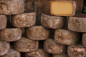 Cheese at a market stall — Stock Photo