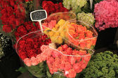 Roses at a market — Stock Photo