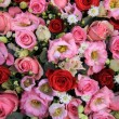 Red, pink and white wedding arrangement — Stock Photo #48571959