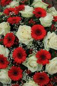 Brautstrauss in rot und weiß — Stockfoto