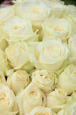 White roses in a wedding arrangement — Stock Photo