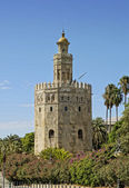 Tower of gold, Seville — Stock Photo