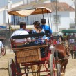 Pilgrimage - Romeria in el Rocio — Stock Photo