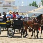 The Romeria de El Rocio, Andalusia, Spain — Stock Photo #13290917