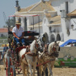 The Romeria de El Rocio, Andalusia, Spain — Stock Photo #13290934