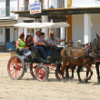 The Romeria de El Rocio, Andalusia, Spain - Stock Photo