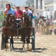 The Romeria de El Rocio, Andalusia, Spain — Stock Photo #13290987