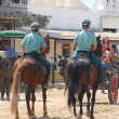 The Romeria de El Rocio, Andalusia, Spain — Stock Photo