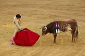 Corrida - Torero or bullfighter kills a bull — Stock Photo