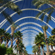 The City of Arts and Sciences, L'Umbracle. — Stock Photo