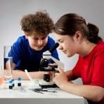 Kids examining preparation under the microscope — Stock Photo #11466718