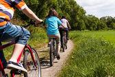 Aile bisikleti — Stok fotoğraf