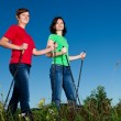 Nordic walking - active women exercising outdoor - ストック写真