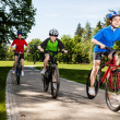 Active family biking — Stock Photo #21106833