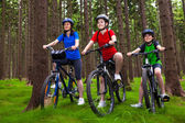 Healthy lifestyle - family biking — Стоковое фото