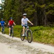 Royalty-Free Stock Photo: Healthy lifestyle -	family biking
