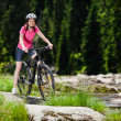 Stock Photo: Woman cycling