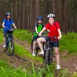 Family biking — Stock Photo #26318865