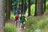 Zdravý životní styl - rodina, cykloturistika — Stock fotografie