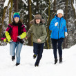Active family - mother and kids running outdoor in winter park — Stockfoto #31619949