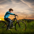 Boy biking — Stock Photo #32570063