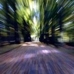 Speed — Stock Photo