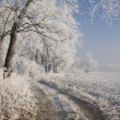 Winter scenery — Foto de Stock