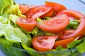 Salad — Foto Stock