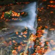 Water flow in autumn scenery — Stock Photo