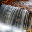 Water flow in autumn scenery — Stock Photo #32750977