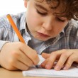 Boy doing homework — Stock Photo #32753875