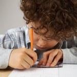 jongen huiswerk — Stockfoto #32753913