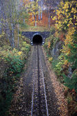 Railway tunnel in autumn scenery — Stock Photo