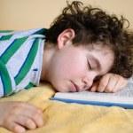 Boy sleeping on book — Stock Photo #32815393