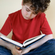 Boy reading book at home — Stock Photo