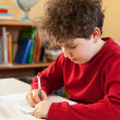 Boy learning at home — Stock Photo #32940391
