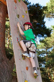 Boy climbing in adventure park — Stock Photo