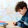 Stock Photo: Boy learning